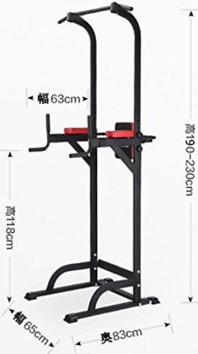 WASAI(ワサイ) ぶら下がり健康器 筋のばし 懸垂トレーニング BS502
