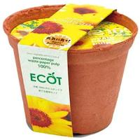 地球にやさしいエコポットで育てるミニヒマワリ栽培セット